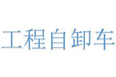 中国重汽 4X2 工程自卸车