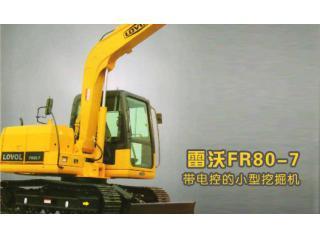 雷沃重工 FR80-7 挖掘机图片