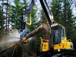 沃尔沃 FC2421C伐木机 挖掘机图片