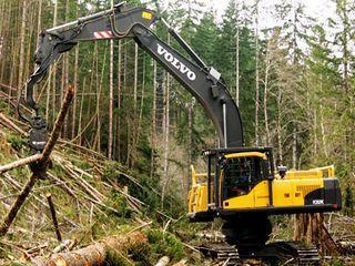 沃尔沃 FC3329C伐木机 挖掘机图片