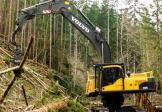 沃尔沃FC3329C伐木机挖掘机